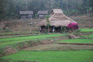 Koppla ner och koppla av i Laos