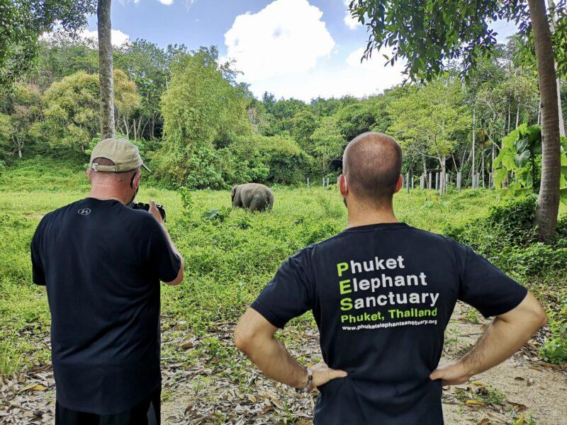 På elefanternas villkor